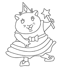 Hamser Princess 17