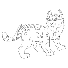 Leopard hunter coloring pages