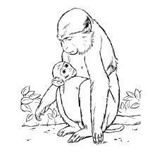 mother and baby monkey coloring pages