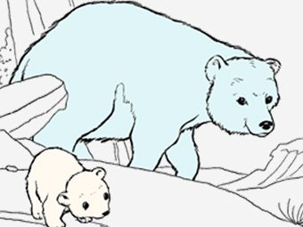 10 Cute Polar Bear Coloring Pages For Your Little Ones