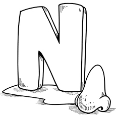 the n is for nose