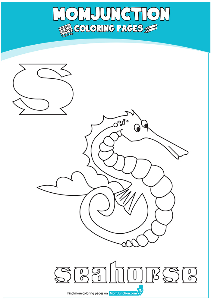 The-'S'-For-Seahorse-16