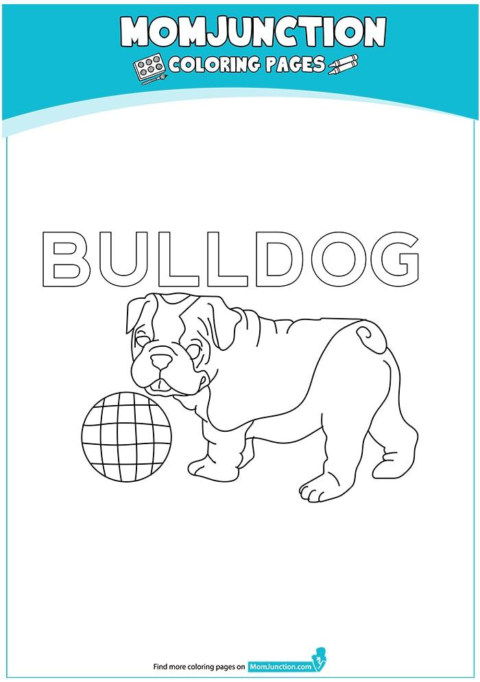 The-Bulldog-coloring-page-16