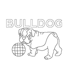 The-Bulldog-coloring-page-16