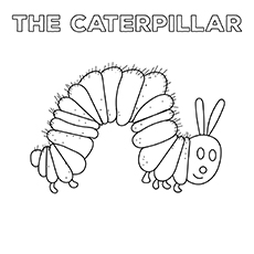 The-Caterpillar-16