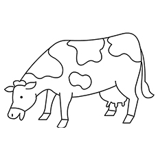 Cool Free Printable Cow Coloring Pages