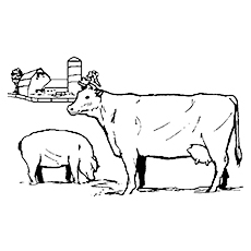 Free Colouring Page Cow With Pig