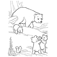 The-Mother-Bear-With-Her-Cubs