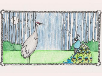 'The Peacock And The Crane Story' For Your Kids