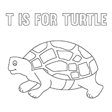 The-T-For-Turtle-16 coloring pages