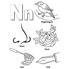 Top 10 Free Printable Letter N Coloring Pages line