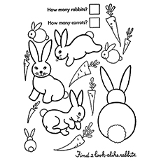 Rabbit Activity Coloring Sheet