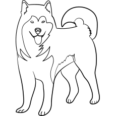 the alaskan malamute - Dog Coloring Pages Printable