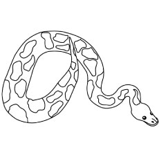 Top 25 Snake Coloring Pages For Your Naughty Kid
