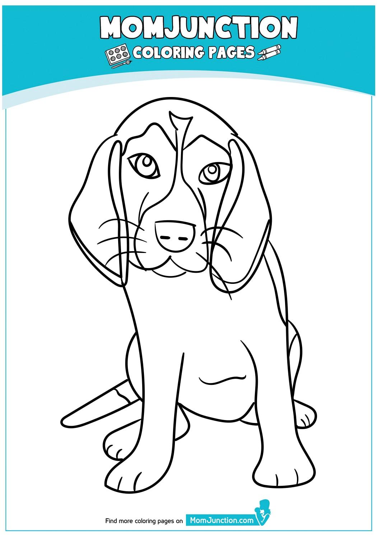 The-beagle
