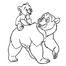 The-bear-with-cub