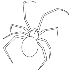 black widow spider printable