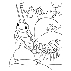 centipede insect cricket bug colouring sheet
