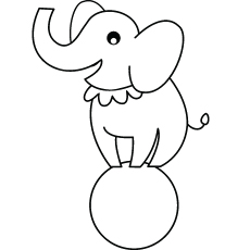 Circus Elephant on Ball for Preschool Picture to Color