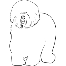the english sheep - Dog Coloring Pages Printable