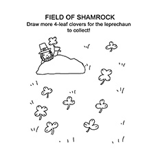 The-field-of-shamrock