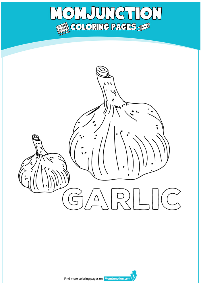 The-g-for-garlic-16