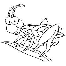 Cricket Bug Dragonfly Insect Coloring Pages To Print The Grasshopper