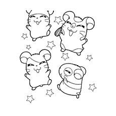 The-hamsters-with-stars