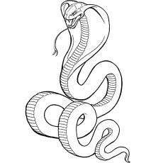 graphic regarding Snake Coloring Pages Printable named Supreme 25 No cost Printable Snake Coloring Internet pages On-line
