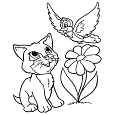 the kitty playing with a bird - Kitten Coloring Page