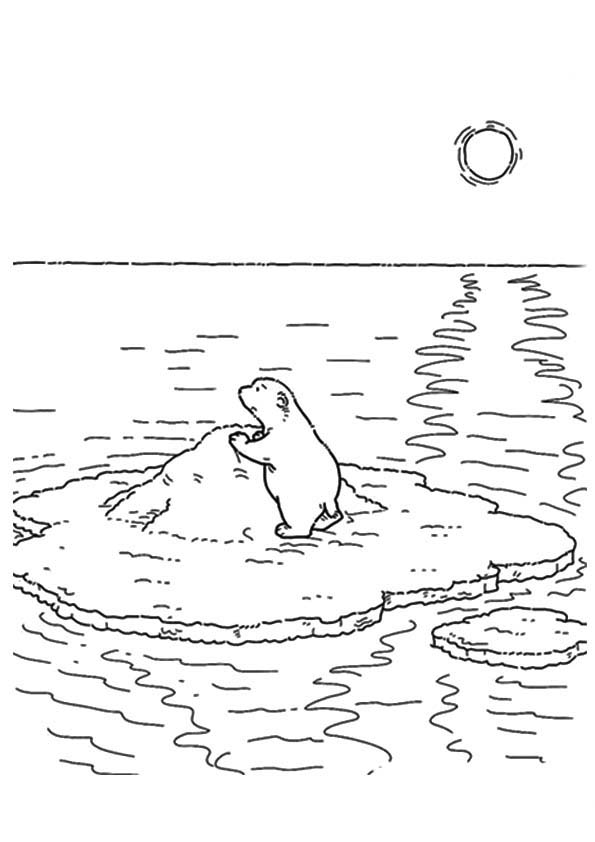 The-lars-the-little-polar-bear