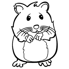 25 Best Hamster Coloring Pages Your Toddler Will Love To Color