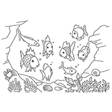 in the ocea - Aquarium Coloring Pages Printable
