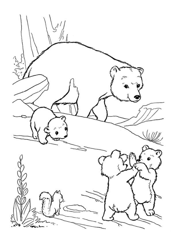 The-polar-bear-family