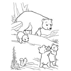 Top 10 Free Printable Polar Bear Coloring Pages Online