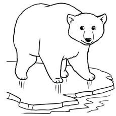 the polar bear on ice polar bear on ice coloring page