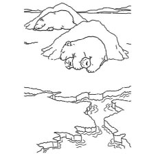 the polar bear sleeping polar bear sleeping coloring pages