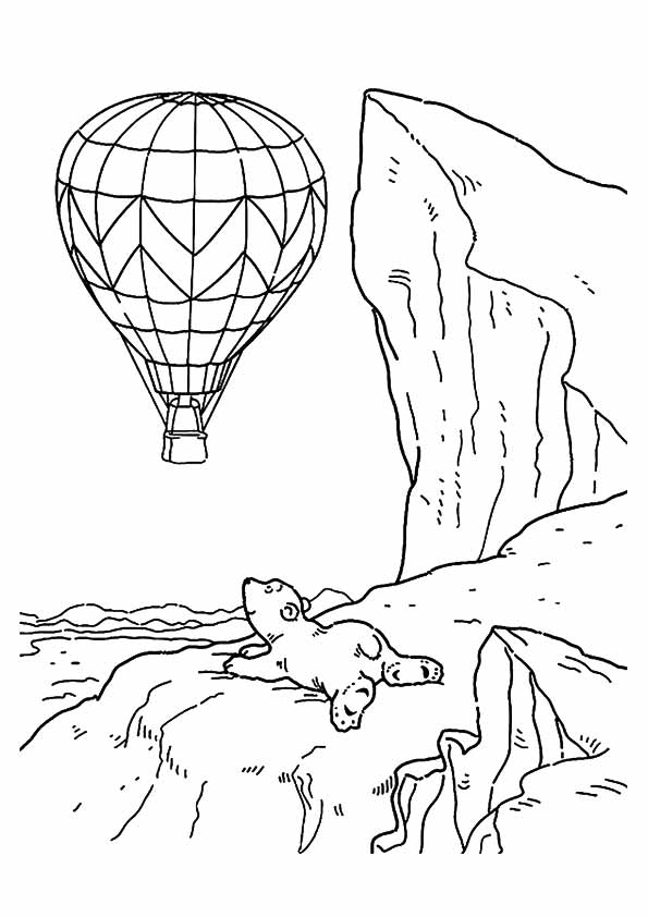 The-polar-bear-watching-hot-air-balloon