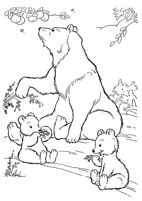 The-polar-bear-with-off-spring