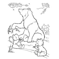 Polar Bear With Off Spring Coloring Pages
