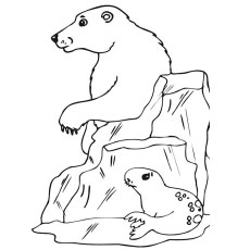 the polar bear with seal polar bear with seal coloring page