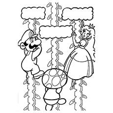 The-princess-peach-and-mario-climbing