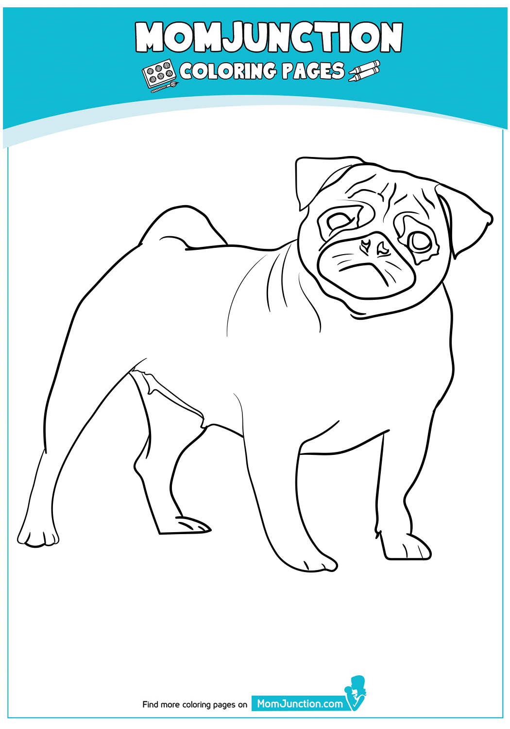 The-pug-color-page