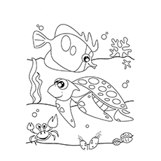 ocean life ocean shells coloring pages