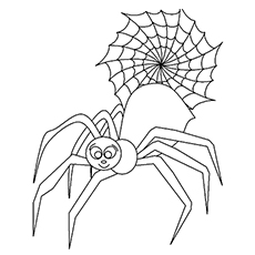 Spider Bug Printable Coloring Pages