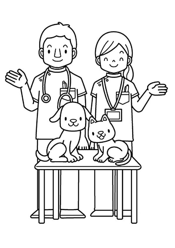 The-veterinarians