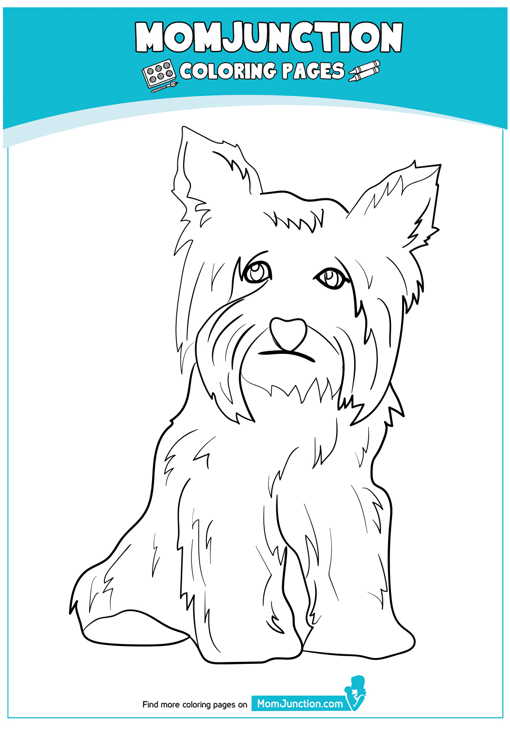 The-yorkshire-terrier