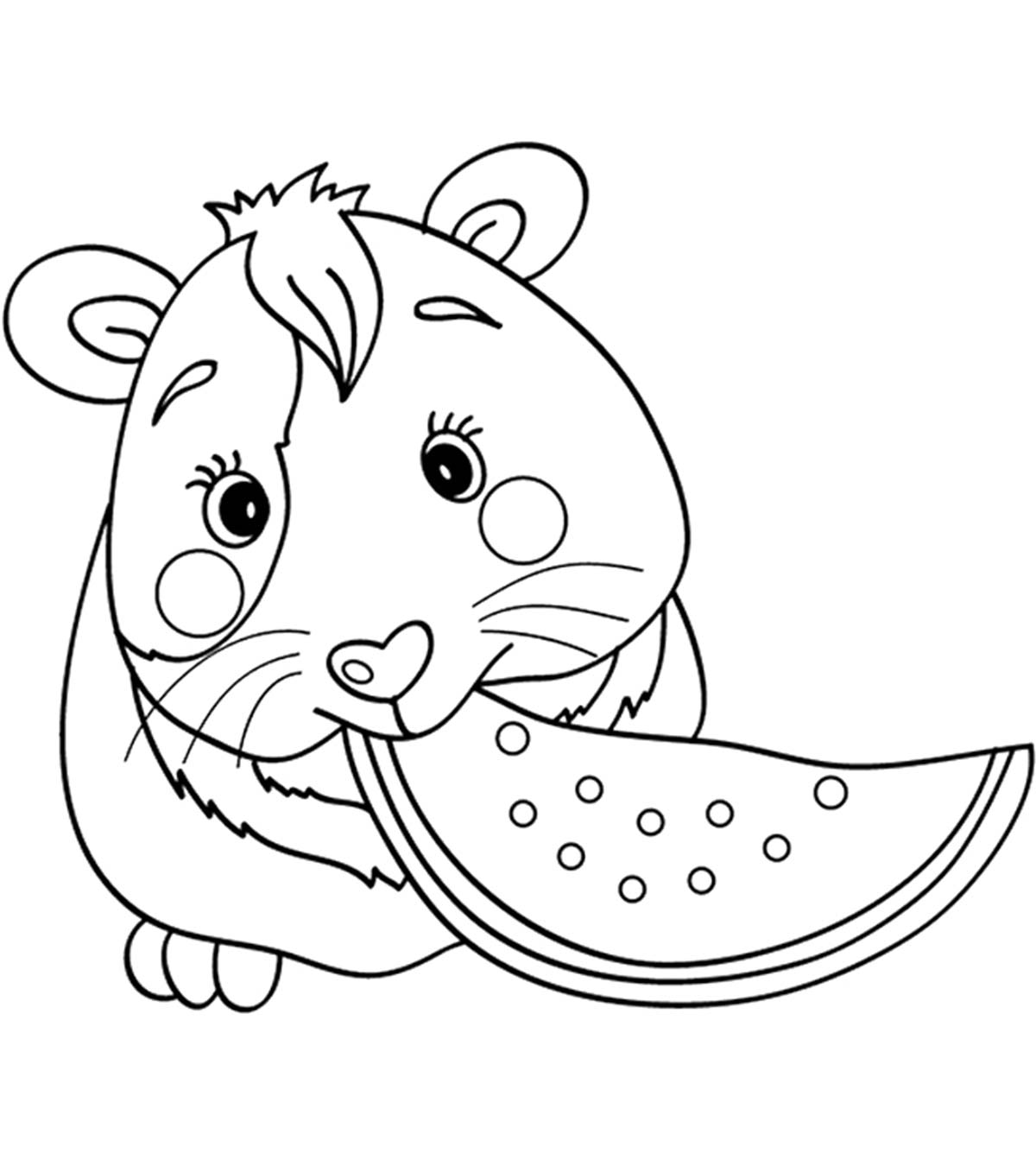 Top  Free Printable Guinea Pig Coloring Pages Online