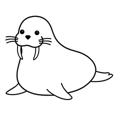 Walrus On Water Coloring Pages Coloring Coloring Pages