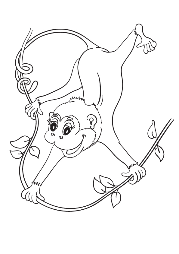 cartoon-monkey-for-children